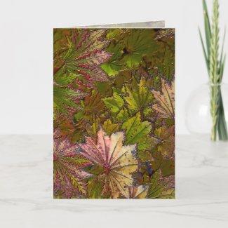 Autumn Leaves: Albert Camus - Greeting Card card