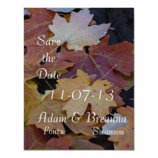 Autumn leaves all around card