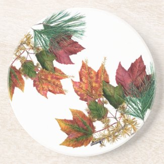 Autumn Leaves and Pine Sandstone Drink Coaster