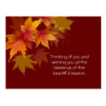 Autumn Leaves are Falling Post Card