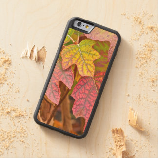 """""""AUTUMN LEAVES"""" CARVED MAPLE iPhone 6 BUMPER CASE"""