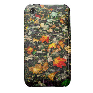 Autumn Leaves iPhone 3 Cover