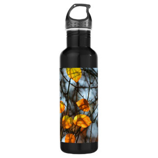 Autumn Leaves Catching the Morning Light Water Bottle