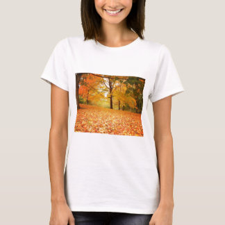 Autumn Leaves, Central Park, New York City T-Shirt