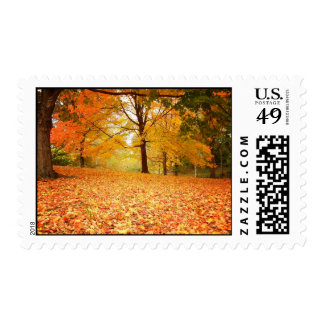 Autumn Leaves, Central Park, NYC Postage