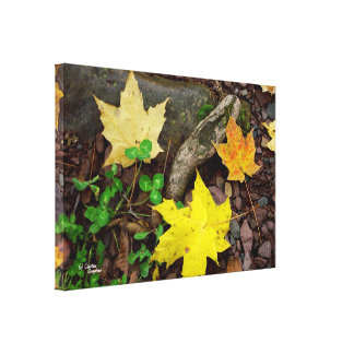Autumn leaves clover Stretched Canvas Print