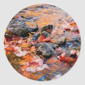 autumn leaves color classic round sticker