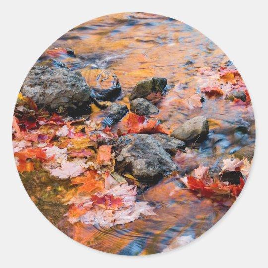 autumn leaves color classic round sticker