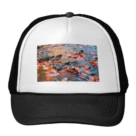 autumn leaves color trucker hat
