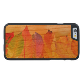 Autumn Leaves Colorful Modern Fine Art Photography Carved Cherry iPhone 6 Slim Case