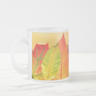 Autumn Leaves Colorful Modern Fine Art Photography Frosted Glass Coffee Mug