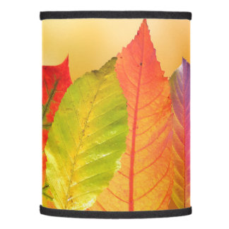 Autumn Leaves Colorful Modern Fine Art Photography Lamp Shade
