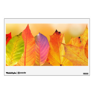 Autumn Leaves Colorful Modern Fine Art Photography Wall Sticker