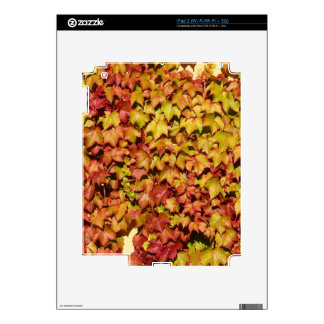 Autumn Leaves Decals For The iPad 2