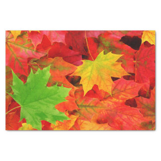 "Autumn Leaves 10"" X 15"" Tissue Paper"