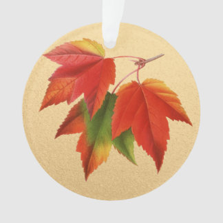 Autumn Leaves Fall Colors Maple Leaf on Gold Ornament