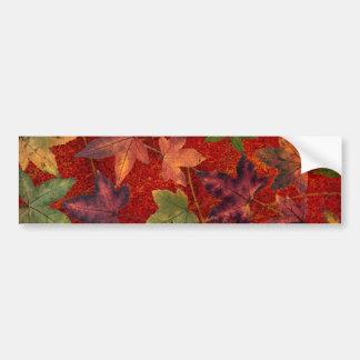 Autumn Leaves Fall Season Tree Leaf Colorful Bumper Sticker