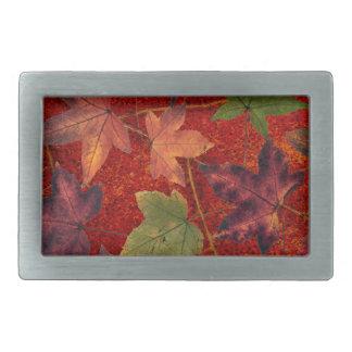 Autumn Leaves Fall Season Tree Leaf Colorful Rectangular Belt Buckle