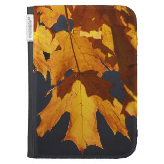 Autumn leaves glow orange and red in light cases for the kindle