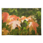 Autumn Leaves Glow Placemat