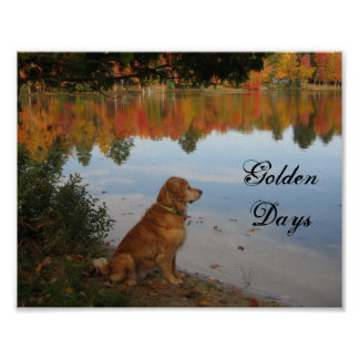 Autumn Leaves Golden Retriever Dog Poster