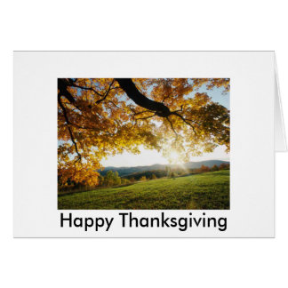 Autumn Leaves, Happy Thanksgiving Greeting Card