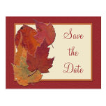 Autumn Leaves II Save the Date Postcard