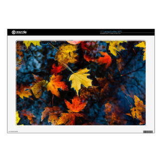 Autumn Leaves in a Pool of Dark Water Decal For Laptop
