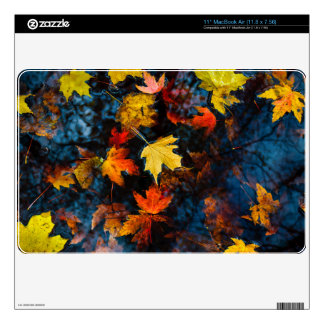 Autumn Leaves in a Pool of Dark Water Decal For The MacBook
