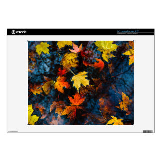 Autumn Leaves in a Pool of Dark Water Laptop Decal
