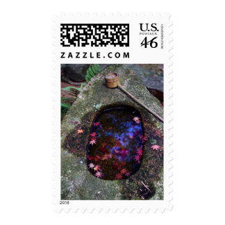 Autumn leaves in Japanese pond Postage