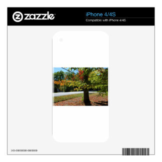 Autumn Leaves in Maine Decal For iPhone 4