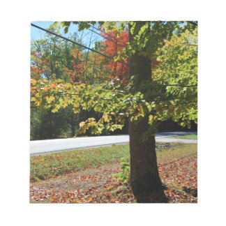 Autumn Leaves in Maine Notepad
