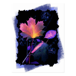 Autumn Leaves in Neon and Blue Post Card
