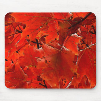 Autumn leaves in red mousepad