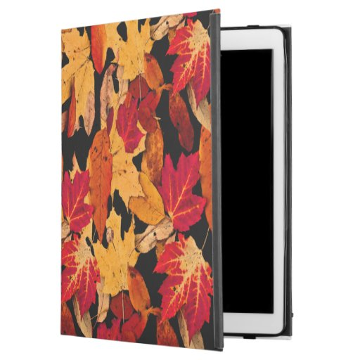 Autumn Leaves in Red Orange Yellow Brown iPad Pro Case