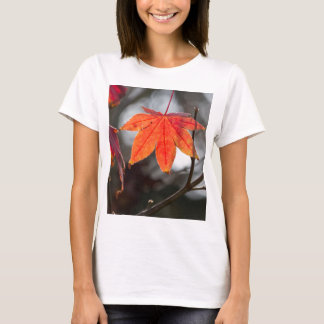 autumn leaves in the garden T-Shirt