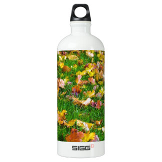 Autumn Leaves in the Green Grass Aluminum Water Bottle