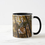 Autumn Leaves in the Morning II Maryland Nature Mug