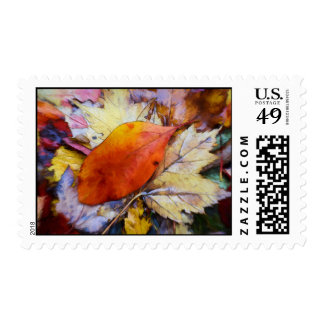 Autumn Leaves in the Poconos Painting Postage