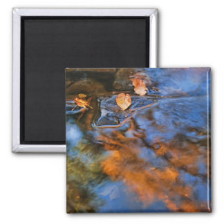 autumn leaves in water 2 inch square magnet