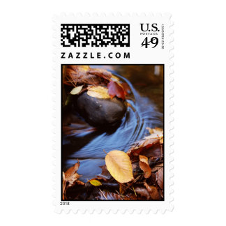 Autumn Leaves in Waterfall's Stream Postage