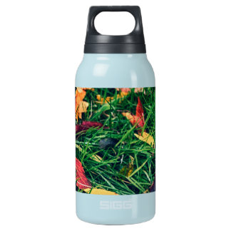 Autumn Leaves Insulated Water Bottle