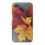 Autumn Leaves iPhone Case iPhone 4 Covers