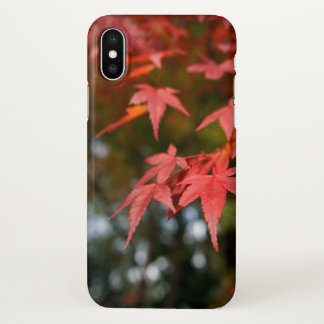 Autumn Leaves iPhone X Case Matte