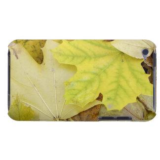 Autumn Leaves iPod Case-Mate Case