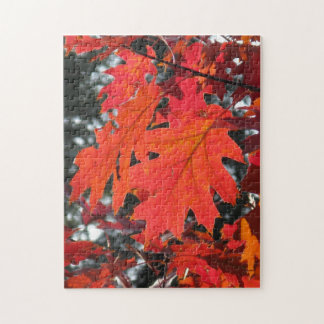 Autumn Leaves Jigsaw Puzzle