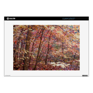 """Autumn Leaves.jpg Decals For 15"""" Laptops"""