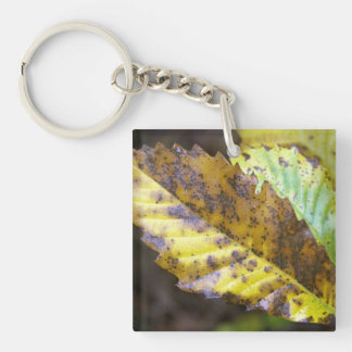 Autumn leaves keychain