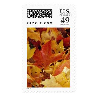 Autumn Leaves Landscape  Postage stamps